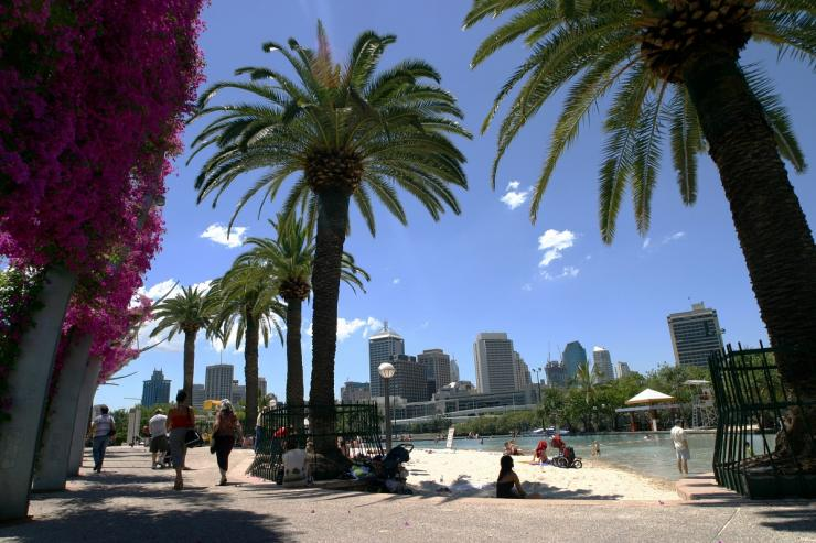 Palm trees line the man-made beach known as South Bank beach in Brisbane October 19, 2003.